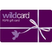 RSPB Shop gift card, purple design product photo