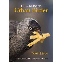 How to Be an Urban Birder by David Lindo product photo