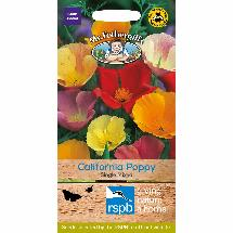 California Poppy seeds - 500 seeds product photo