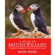 A Year in British Wildlife by Mark Ward product photo