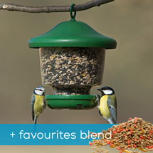 My favourite's feeder & favourites blend bird food product photo