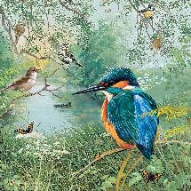 RSPB Nature reserves Kingfisher jigsaw product photo