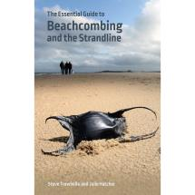 Beachcombing and the strandline product photo