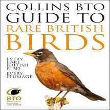 Collins guide to rare British birds product photo