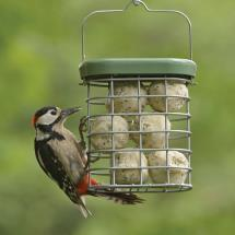 RSPB Ultimate suet feeder product photo