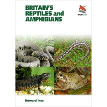 Britain's reptiles and amphibians product photo