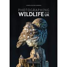 Photographing wildlife in the UK product photo