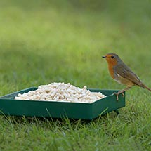 RSPB Metal ground feeder product photo