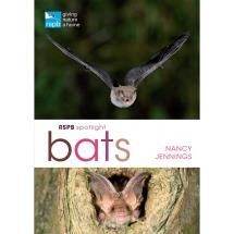 RSPB Spotlight Bats product photo