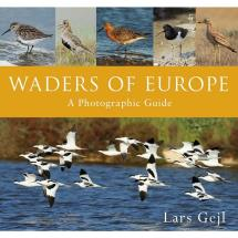 Waders of Europe product photo