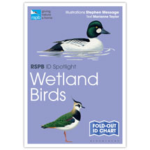 Wetland birds identifier chart - RSPB ID Spotlight series product photo