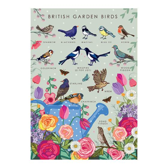 British garden birds product photo Default L