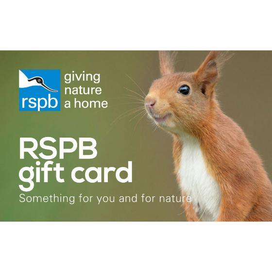 RSPB Shop gift card, squirrel design product photo Default L