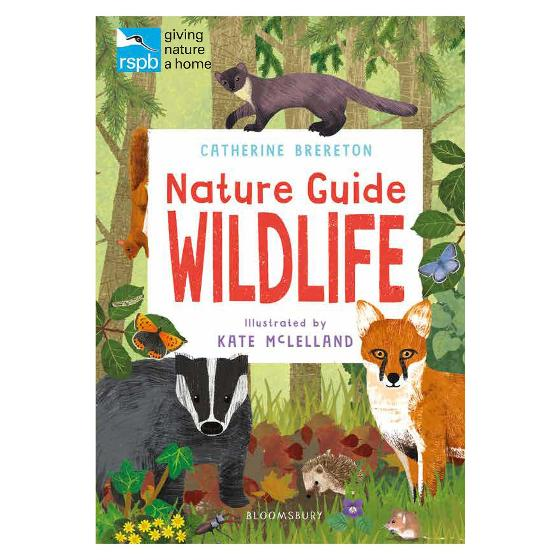 RSPB Nature Guide: Wildlife product photo Default L