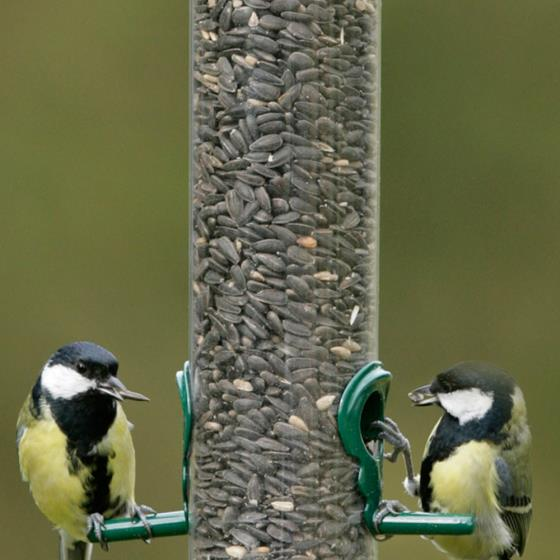 Big Garden Birdwatch favourites product photo Side View -  - additional image 3 L