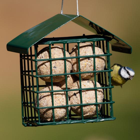 Dual suet feeder for fat balls & cakes product photo Front View - additional image 1 L