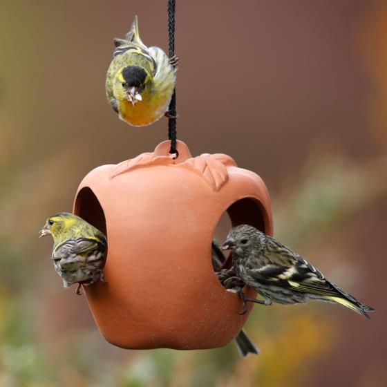 Terracotta apple bird feeder product photo Front View - additional image 1 L
