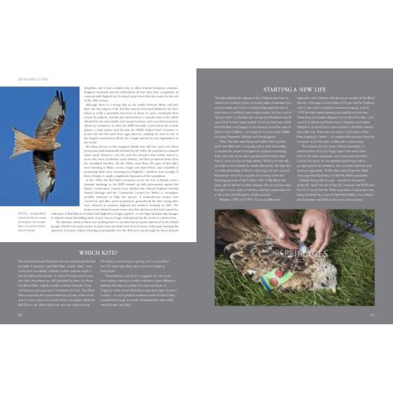 RSPB British Birds of Prey product photo Back View -  - additional image 2 L