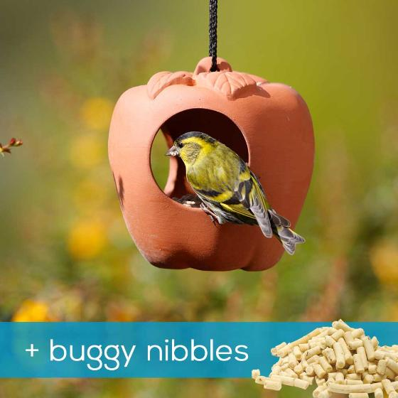 Apple bird feeder & buggy nibbles product photo Default L