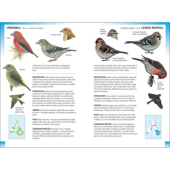 RSPB Pocket Guide to British Birds, 2nd Edition product photo Back View -  - additional image 2 L