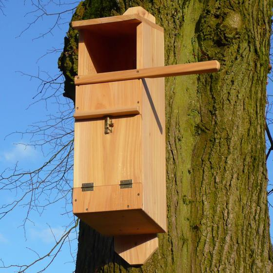 Tawny owl nest box product photo Default L