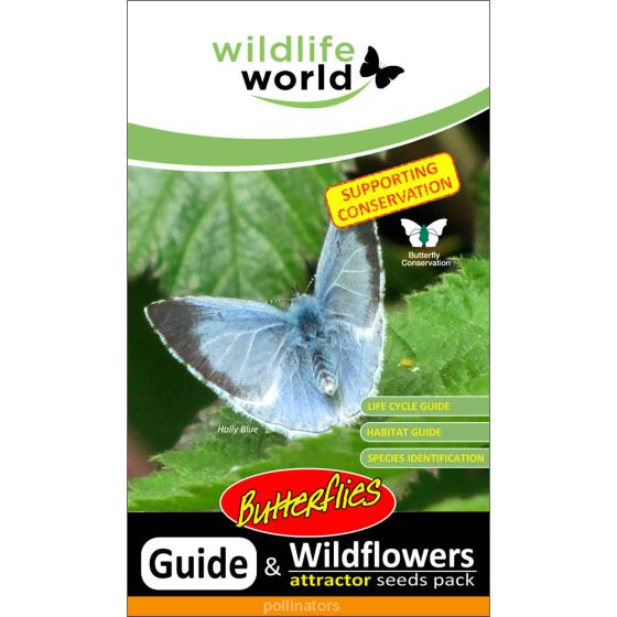 Butterfly attractor seed pack product photo Front View - additional image 1 L