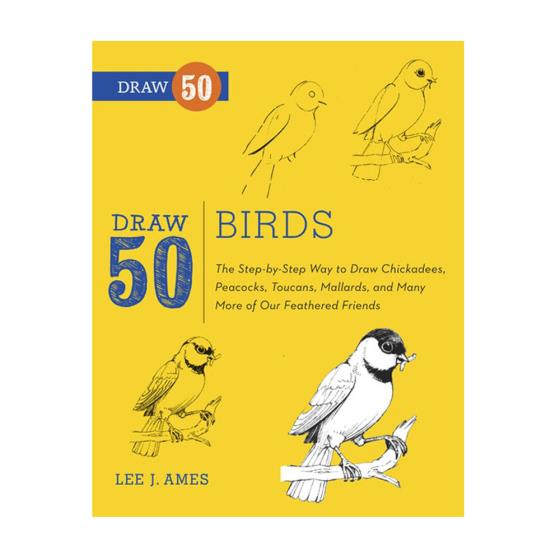 Draw 50 Birds product photo