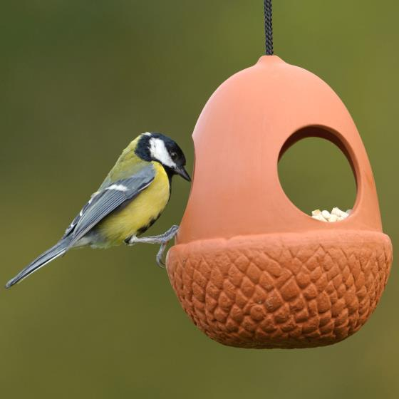 Terracotta acorn bird feeder product photo