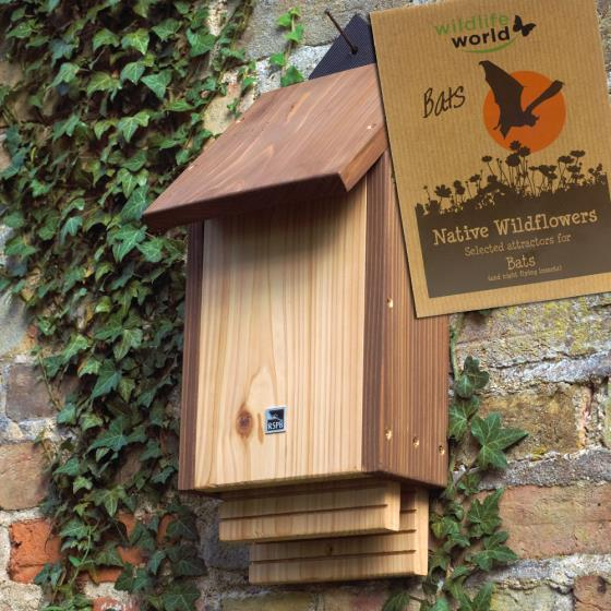 RSPB Burford bat box & bat attractor seeds product photo