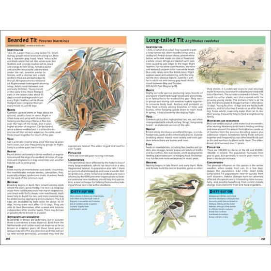 RSPB Handbook of British Birds product photo Front View - additional image 1 L