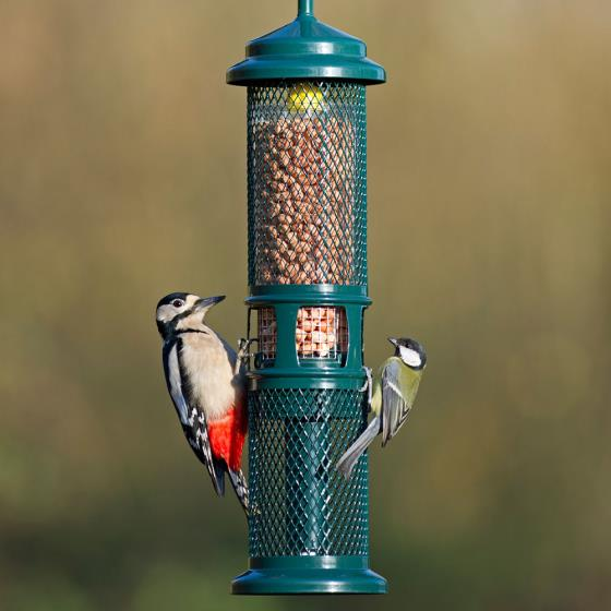Squirrel Buster, nut and nibble feeder product photo