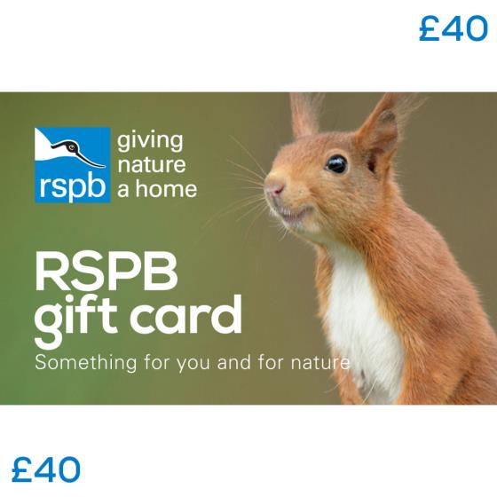 RSPB Gift card £40, squirrel product photo Default L