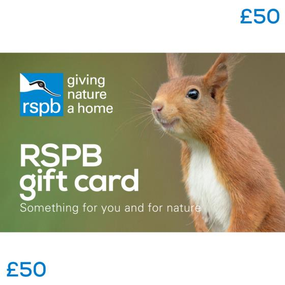 RSPB Gift card £50, squirrel product photo Default L