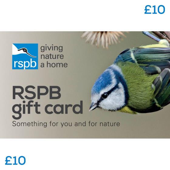 RSPB Gift card £10, blue tit product photo Default L