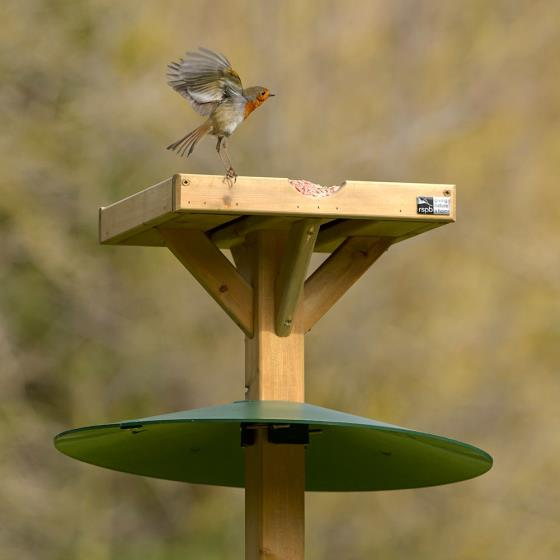 Bird table squirrel baffle product photo Default L
