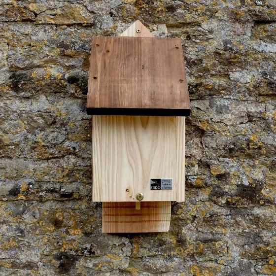 RSPB Single chamber bat box & seeds product photo Front View - additional image 1 L