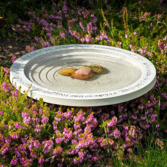 Shenstone bird bath product photo Back View -  - additional image 2 L