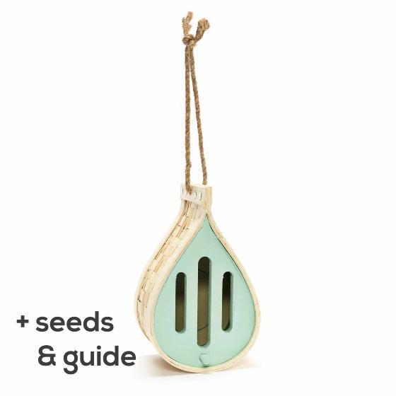 Dewdrop butterfly house with seeds and guide product photo Default L