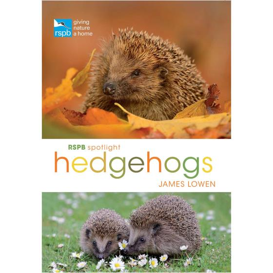RSPB Spotlight hedgehogs product photo