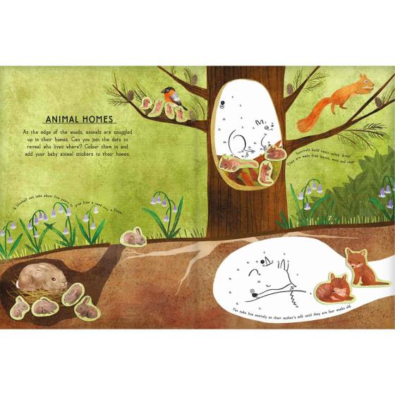 RSPB Woodland animals activity sticker book product photo Front View - additional image 1 L
