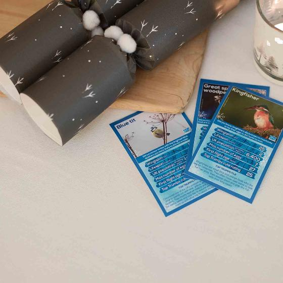 Footprints in the snow Top Trumps crackers x2 product photo Front View - additional image 1 L