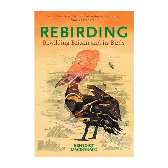 Rebirding - Rewilding Britain and its Birds by B Macdonald (Paperback) product photo Default L