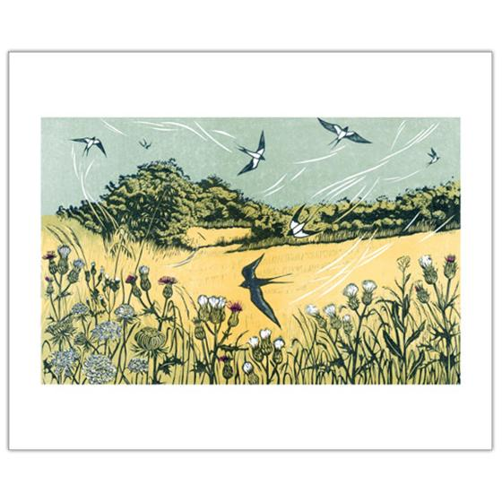 Bayfield Swallow greetings card product photo Default L
