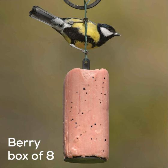 Super suet hanging cakes, berry x8 product photo