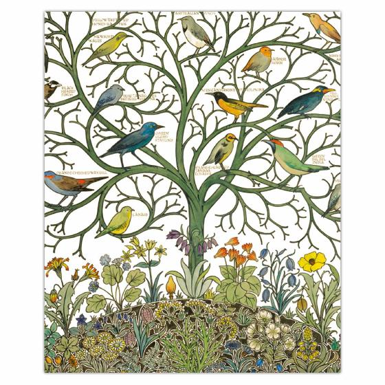 Birds of many climes greetings card product photo Default L