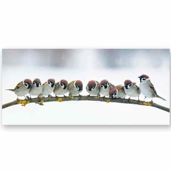 Christmas chatter RSPB charity Christmas cards - 10 pack product photo Default L
