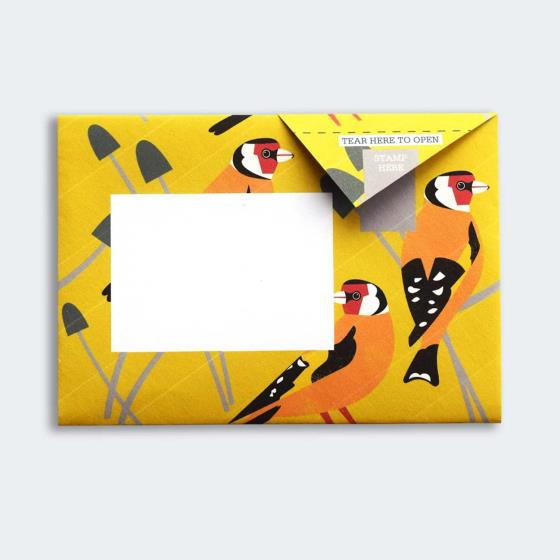 Eco-friendly stationery - 6 pack of Dawn chorus Pigeon letter papers product photo additional image 4 L