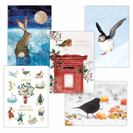 Fab forty RSPB charity Christmas cards - 40 pack product photo Side View -  - additional image 3 L