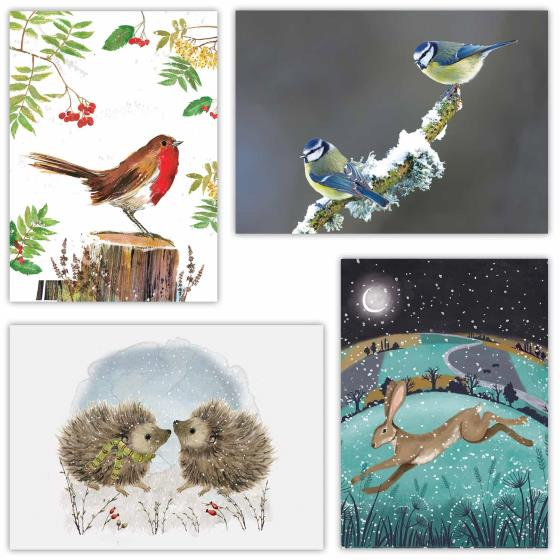 Fab forty RSPB charity Christmas cards - 40 pack 2020 product photo Side View -  - additional image 3 L