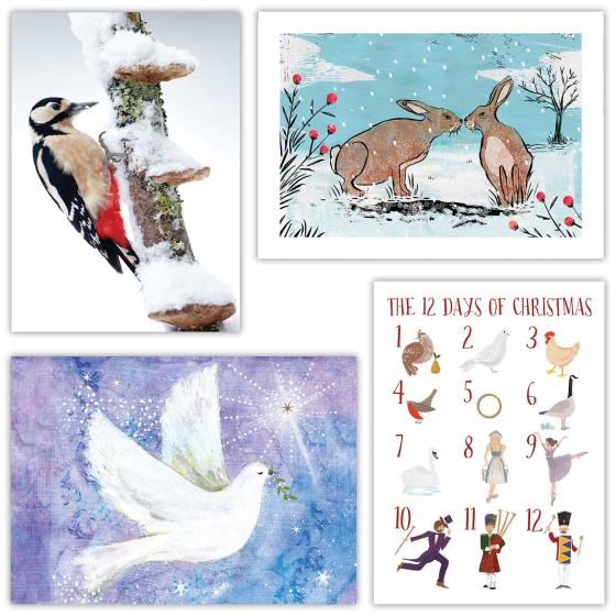 Fab forty RSPB charity Christmas cards - 40 pack 2020 product photo Back View -  - additional image 2 L